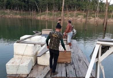Fiscalização apreende uma tonelada de peixes capturados no período do defeso no Pará
