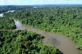 Rio Jamanxim