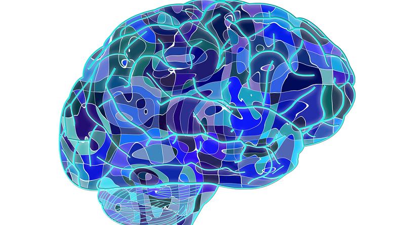 cerebro-azul