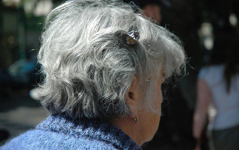 Estudo liderado por brasileiros mostrou que irisina pode reverter problemas de memória em camundongos com Alzheimer — Foto: Julim6/Pixabay