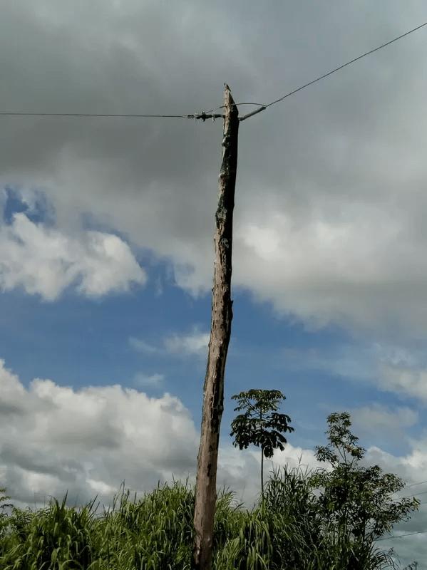 Celpa retira ligações clandestinas instaladas na PA-150 — Foto: Divulgação