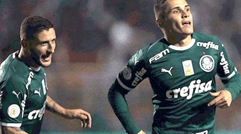 Palmeiras-julho-de-2019-ass-990x556
