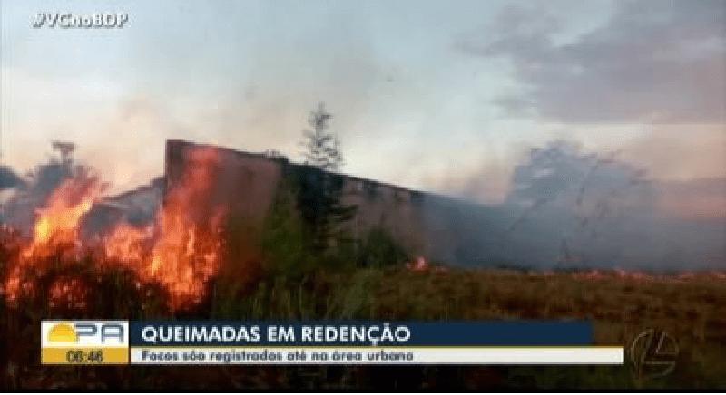 queimadas2