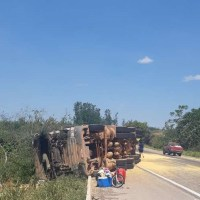 Caminhão carregado de milho tomba na BR 163 próximo a Novo Progresso