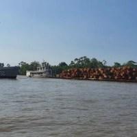 Marinha apreende carga ilegal de madeira avaliada em R$ 200 mil no PA