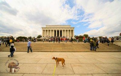 First Days; Washington