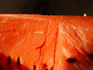 English: Watermelon - Close up Italiano: Angur...