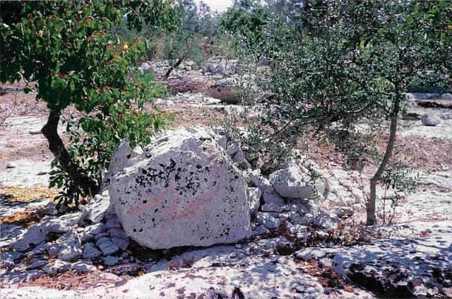 Resti di un possibile tumulo con cista dolmenica all' interno, di cui restavano questi tre ortostati laterali, e pietrame minuto