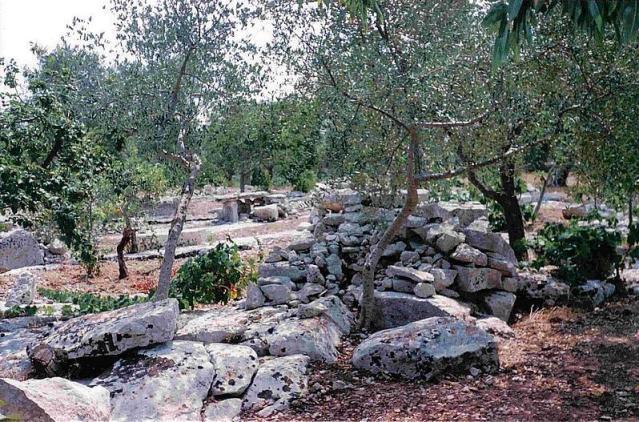 dolmen8