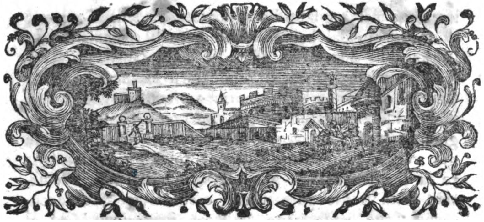Copertino: una mancata veduta settecentesca