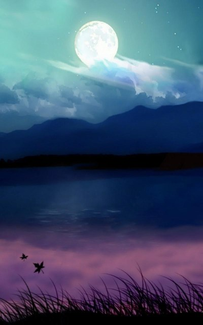 800x1280 Background HD Wallpaper - 084