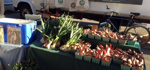 Market 04-25-15 Small World Garlic