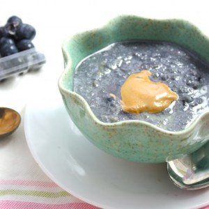"Blueberry Stuffed Low Carb ""Cocomeal"""