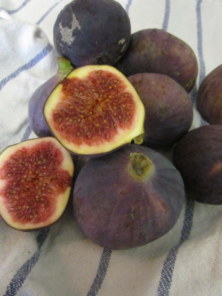 Autumn Arrival (Fig and Almond Cake)