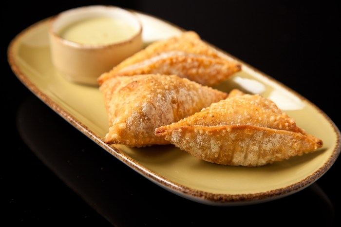 Chicken Ropa Empanadas Recipe – Food Republic