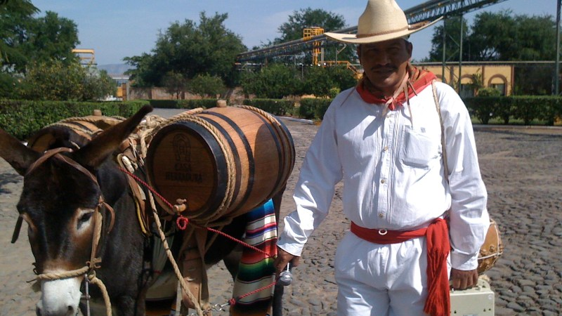 5 Places You Must Visit Along The Tequila Trail