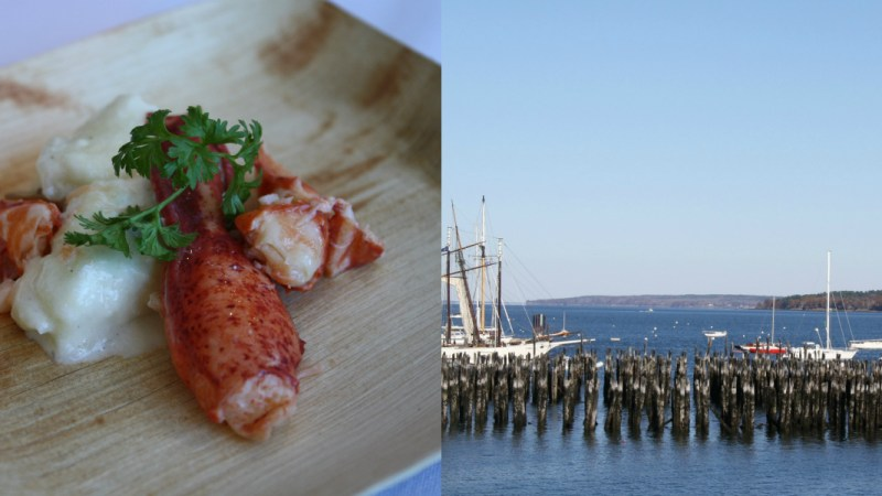 Live From The Harvest On The Harbor Festival In Portland, Maine. Lobster Involved.