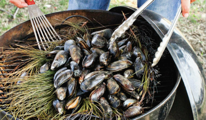 Pine Bough-Roasted Mussels Recipe