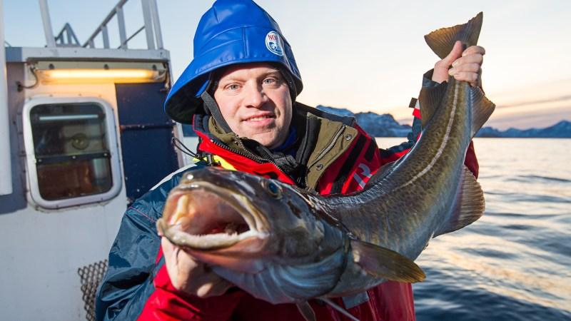 Ben Pollinger is currently featuring Skrei — Norwegian migratory cod — on his menu at Oceana.