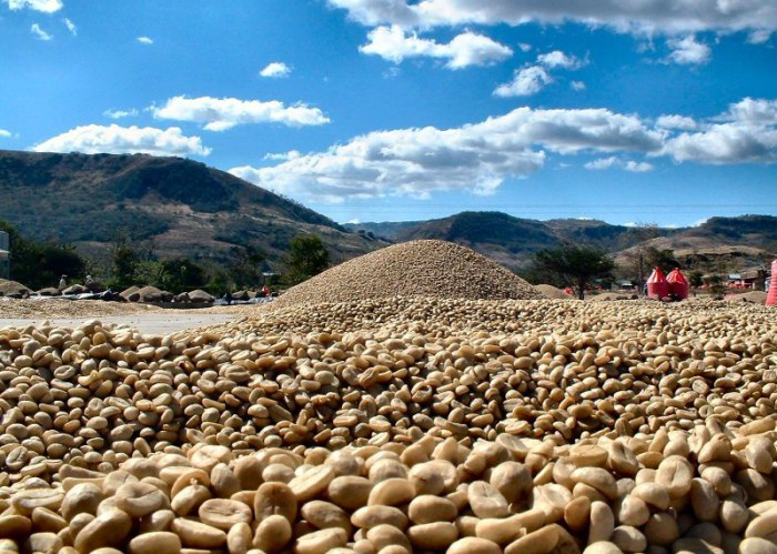 What Does 'Fair Trade' Coffee Really Mean? - Food Republic