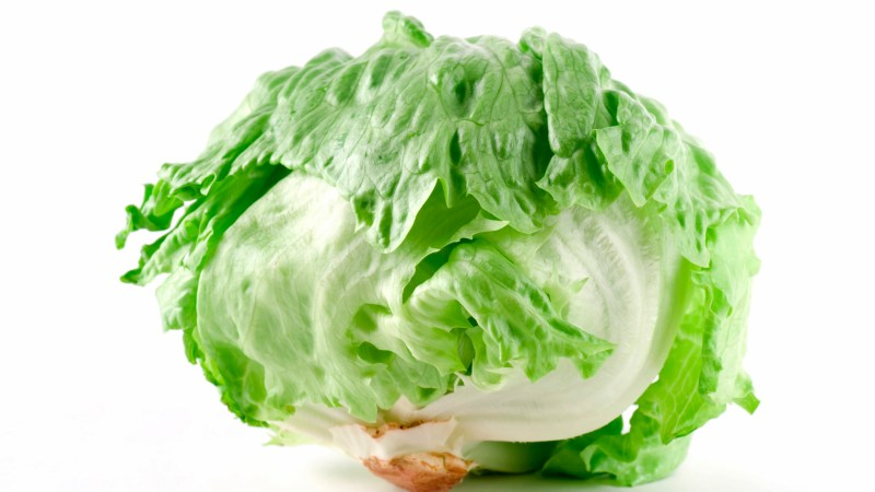 How To Core A Head Of Lettuce In One Firm Smash. No Knife Required!