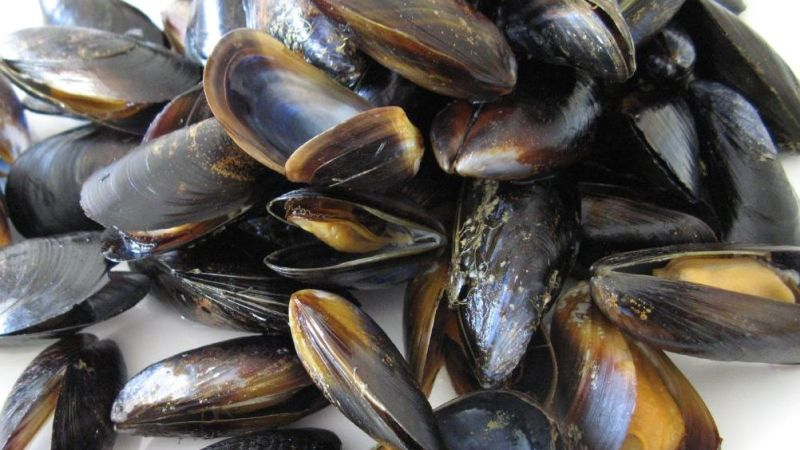 ... In Season In March: Flex Those Mussels And Get Down With Blood Orange