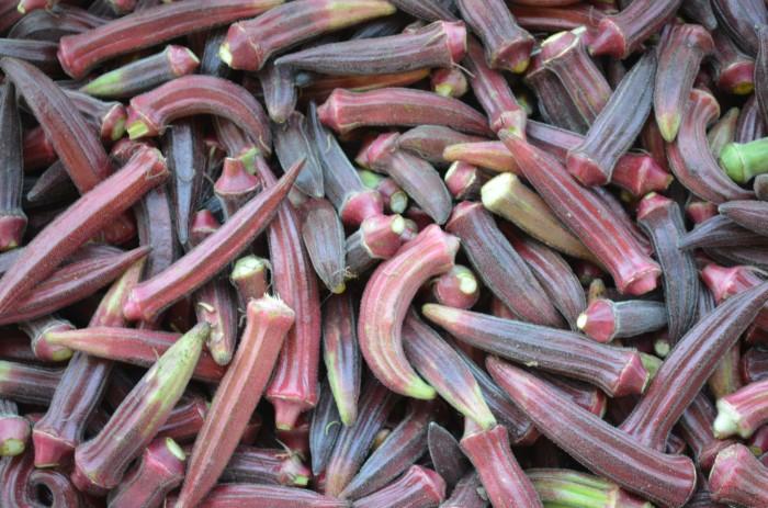 Red Okra from Suzie's Farm via Flickr