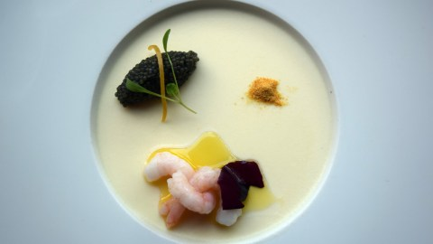 Cauliflower Panna Cotta