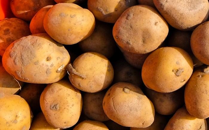 Belgium Potatoes