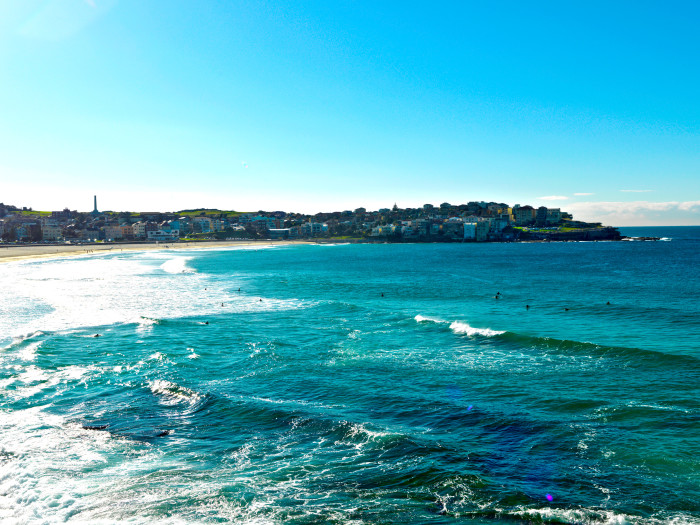 When you're not surfing the waves, Bondi Beach has a lot of hyperlocal bounty to offer.