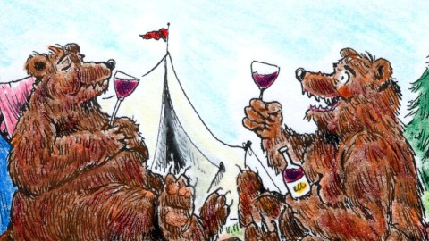 Bears Pair Wine