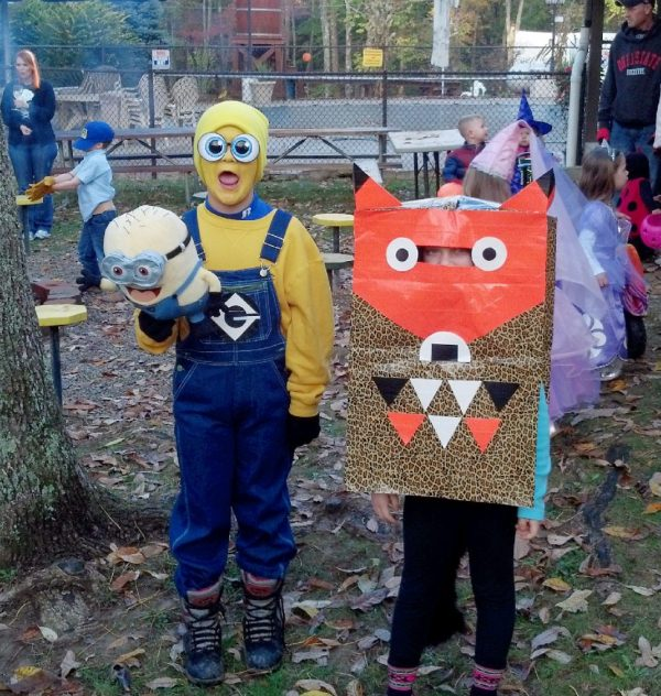 DIY Minion and Fox