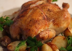 BACKGROUND CLASSIC ROAST CHOOK