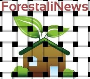 forestalinews (192)