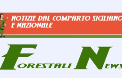 forestalinews
