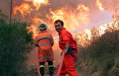 20000909- RAVENNA - CRO: INCENDIO PINETA LIDO DI CLASSE. Vigili del fuoco e guardie forestali cercano di bloccare il fronte del fuoco che stˆ devastando la pineta di Lido di Classe.                    ZANI/BENVENUTI           ANSA
