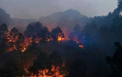 india-incendi-uttarakhand-orig_main