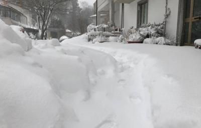 Neve nell'Aretino, il 17 gennaio 2017. ANSA/