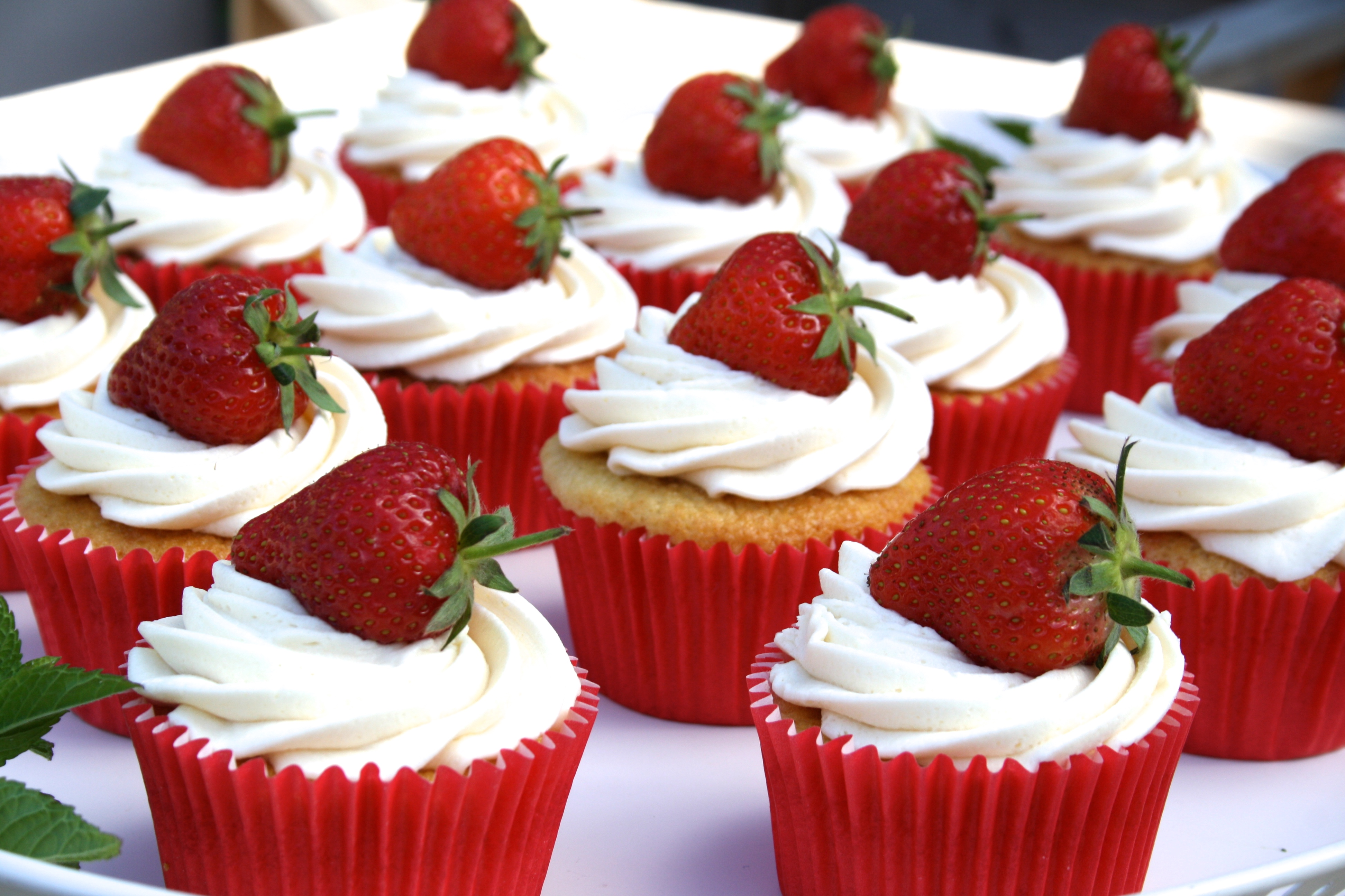 Cup Cake Easy Recipe