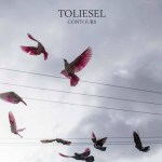 Toliesel