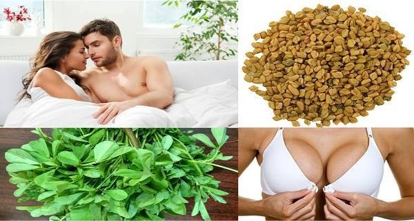 Miracle Herb: Enlarge Women's Breast and Makes Men Incredible Lovers
