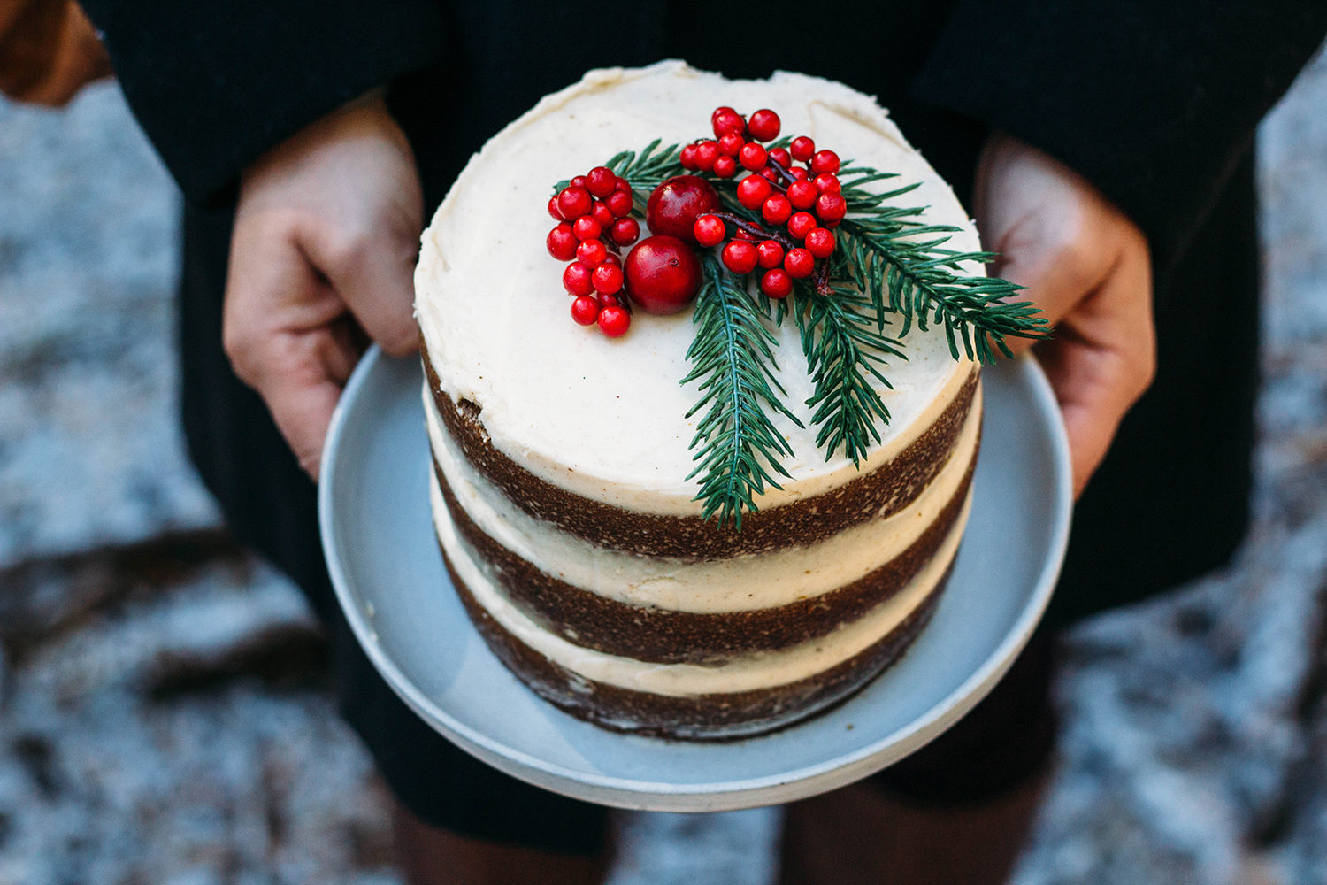 gingerbread-cake-winter-adventures