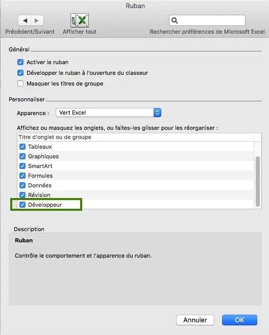 menu développeur dans les préférences du ruban