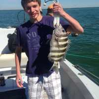 Fort Myers Fishing Report ~ sheepshead