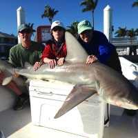 12/13/13, Fort Myers Fishing Report: Big Bull Shark, Redfish Pass, Jimmy Burnsed ~ #FortMyersFishing