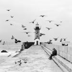 Hitchcock y sus pájaros (Pedro Díaz Molins)