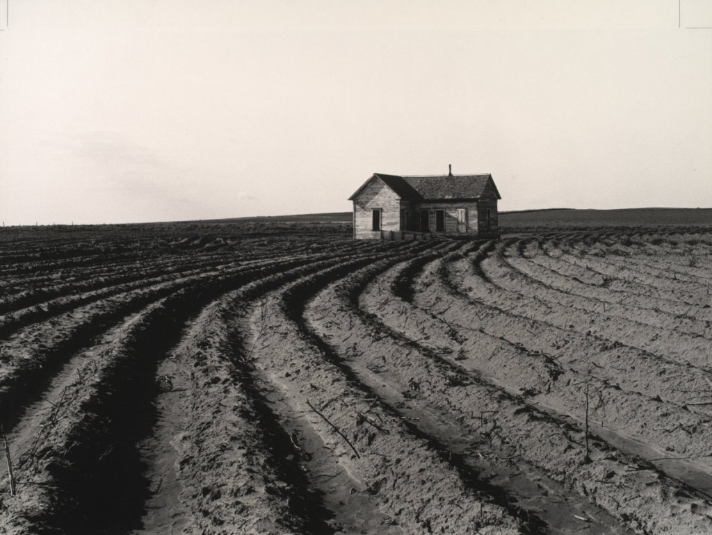 Dorothea Lange, Tractored Out, Childress County, Texas, 1938.