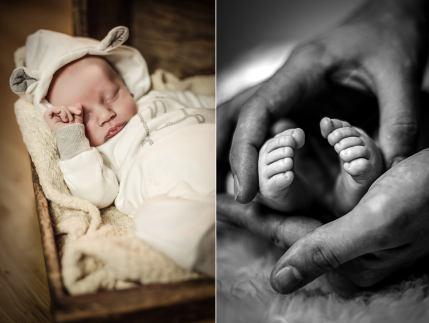 Newbornshooting-box-web