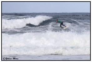 surf2016-31