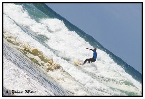 surf2016-49